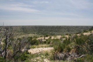 Crockett County, Texas (6)